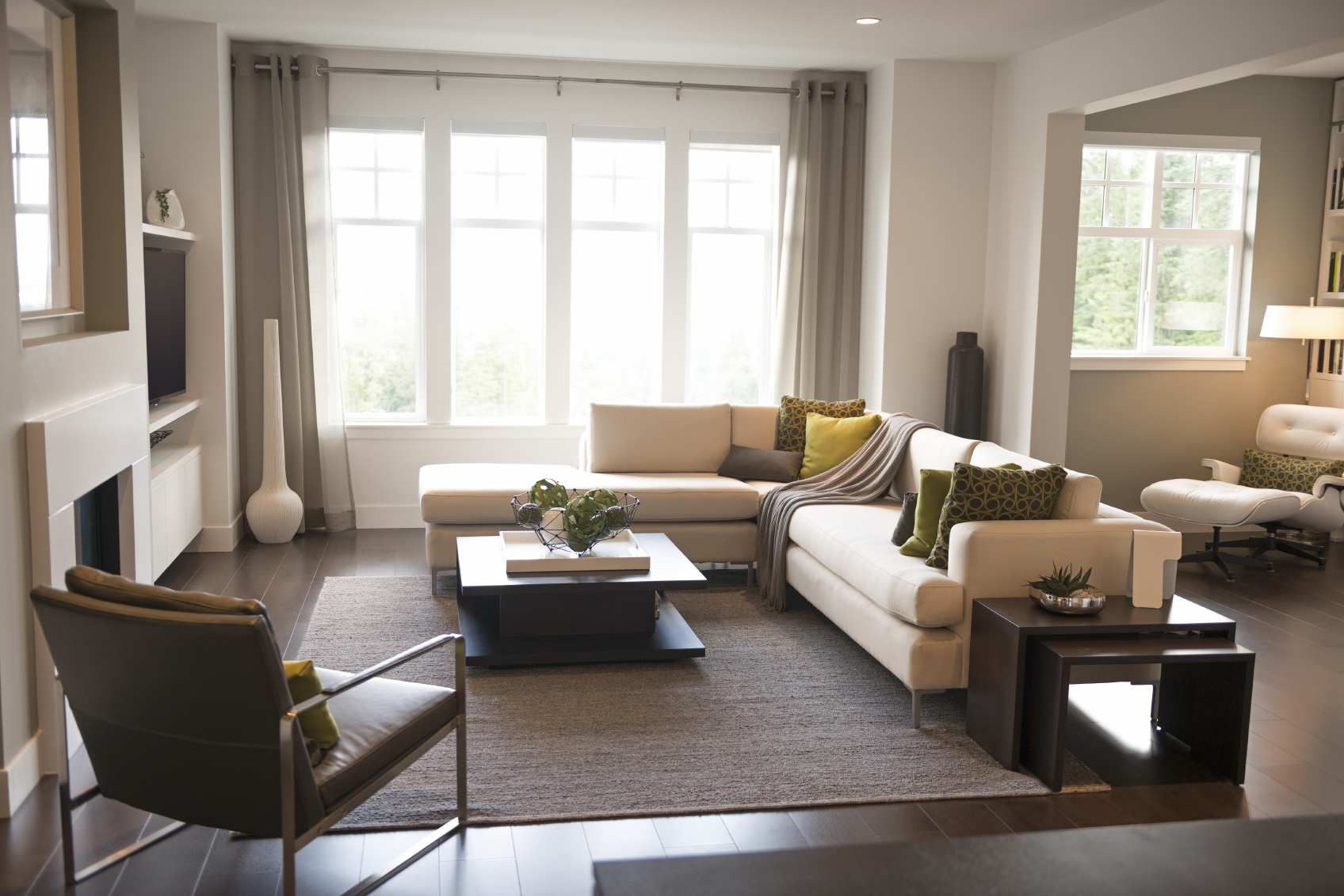 contemporary / very well decorated / show home living room